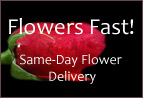 Flowers Fast Review